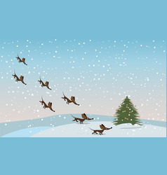 dachshunds fly to the tree vector image