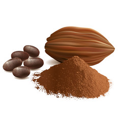 Cacao with powder beans vector