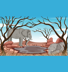 Dying elephants in drought land vector