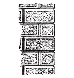 Frosted masonry amazing vintage engraving vector