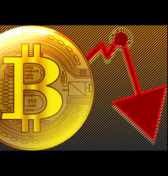 golden bitcoin crash graph in cycles panic sell vector image