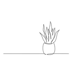 house plant in pot continuous one line drawing vector image
