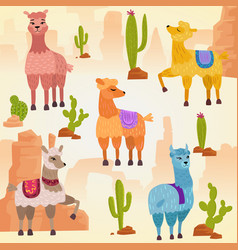 set cute alpaca lama vector image