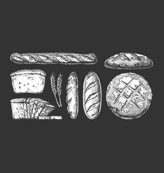 set with bakery products vector image