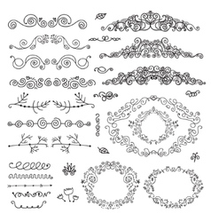 floral decor set of hand drawn vintage vector image vector image