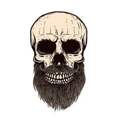 bearded skull on white background design element vector image
