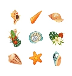 Realistic Tropical Icons Set vector image