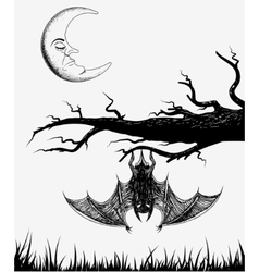 Bat is hanging on a branch vector