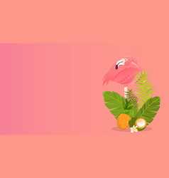 Flamingo bird design on white background vector