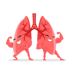 Healthy and strong lungs vector