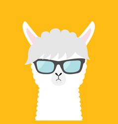 Llama alpaca animal wearing sun glassess cute vector