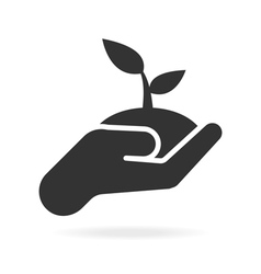 Plant in hand icon vector