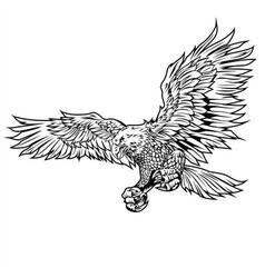 eagle bird wing annimal usa america illust vector image