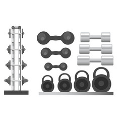 gym and fitness sport equipment weight and vector image