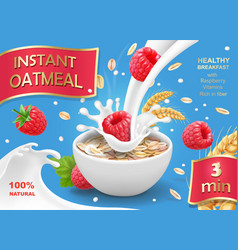 instant oatmeals oat flakes with raspberry vector image