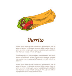 mexican spicy fast food burrito wrap promo poster vector image
