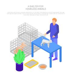 Shelter homeless animal concept background vector