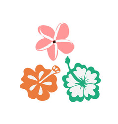 summer tropical flowers vector image vector image