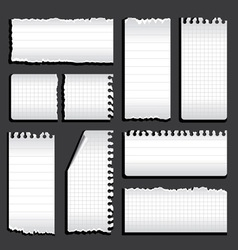 torn notebook vector image