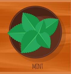 mint flat design icon vector image