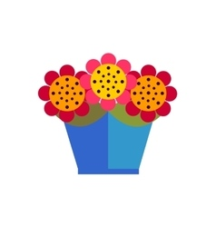 Colorful flowers in pot on white background fla vector