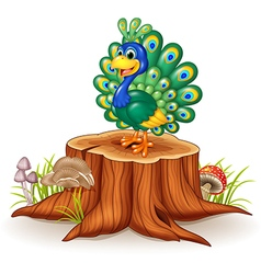 Cute peacock on tree stump vector image