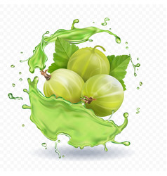 Gooseberry fruit in juice splash jam or yogurt vector