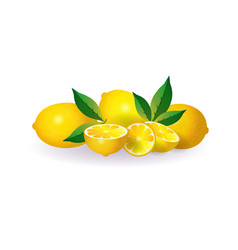 lemon fruit on white background healthy lifestyle vector image