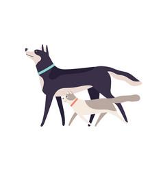 Two funny cartoon domestic animal friend walking vector