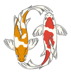 colored with koi carps vector image