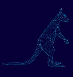 a kangaroo wireframe blue lines on a dark vector image