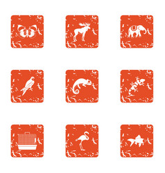 Animal humanity icons set grunge style vector