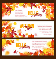 autumn foliage fall falling leaves banners vector image