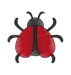 bug virus symbol vector image