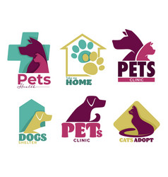 pets vet clinic and shelter isolated icons dog vector image