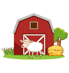 Scene with sheep standing barn vector