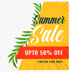 summer sale banner with offer details vector image