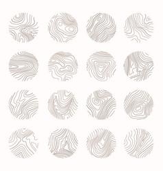 Tree ring wood line art topography vector