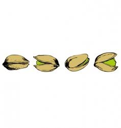 set of pistachio vector image vector image