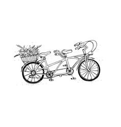 hand drawn tandem city bicycle with basket of vector image