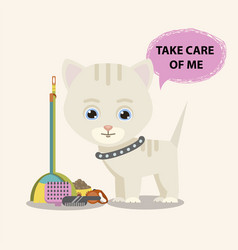 cat with animal care facilities vector image