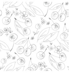 cherry bloom hand drawn outline seamless pattern vector image