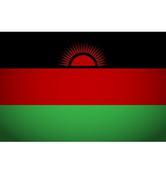 Flag of Malawi vector image