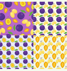 floral seamless pattern with plums nature fruit vector image