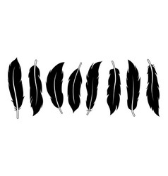 set different feathers vector image