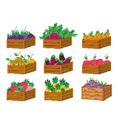 Set of pixelated harvest icons vector