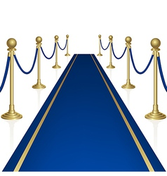Blue carpet vector image vector image