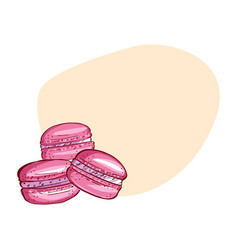 cute macaroon card with painted french vector image