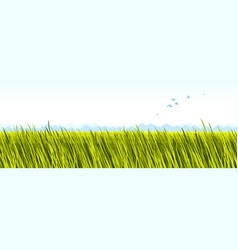 Grassland meadow scenic tranquil and calm vector