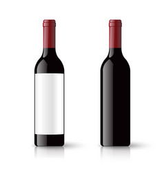 red wine bottles and empty label isolated on vector image
